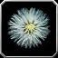Icon - Swanwool Seed.png