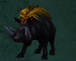 Card - Black Boar.jpg