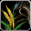 Plant frame 003.png