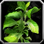Icon - Bison Grass.png