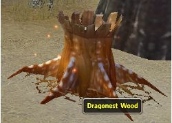 DragonestWood.jpg