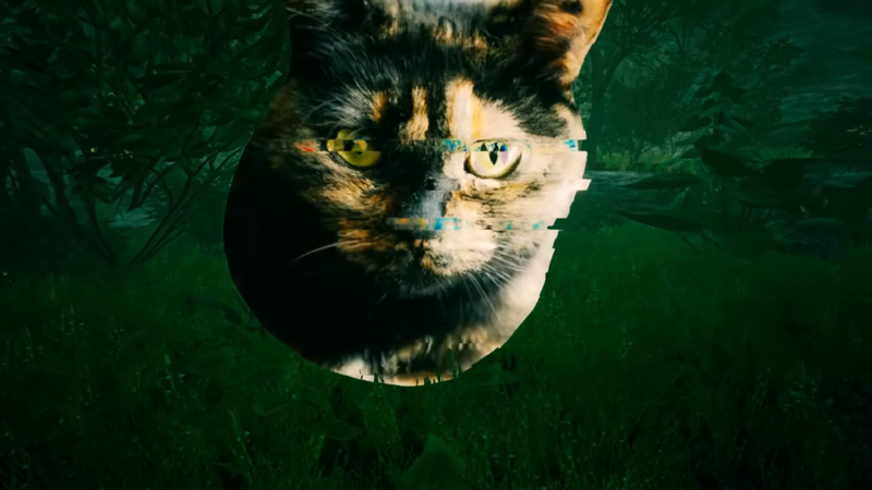File:Arachnophobia Cat.png