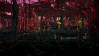Red Jungle.png