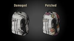 Damaged Patched Img 01.jpg