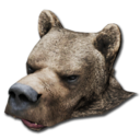 Bear Head Hat.png