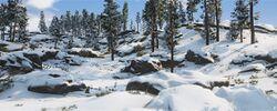 Mountain Glade Img 01.jpg