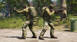Weapon Animations Img 01.jpg