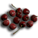 Wild Cherry.png
