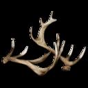 Deer Antlers.png