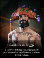 Sombrero de Briggsy.png