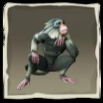 Macaco de lomo plateado inv.png