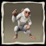 Capuchino nuboso inv.png