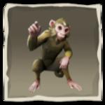 Capuchino de patas rosas inv.png