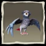 Periquito de alas grises inv.png