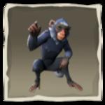 Capuchino azul laguna inv.png