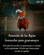 Atuendo de las Ratas Inmundas para guacamayo.png