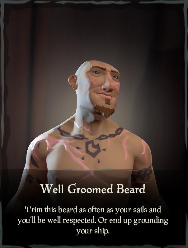 Well Groomed Beard - Sea of Thieves Wiki