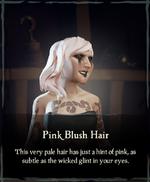 Pink Blush Hair.png