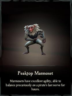 Peaktop Marmoset.png