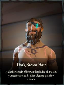 Dark Brown Hair.png