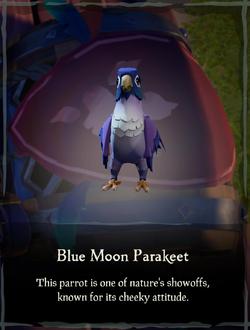 Blue Moon Parakeet.png