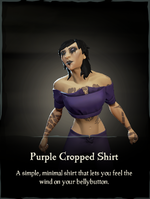 Purple Cropped Shirt.png