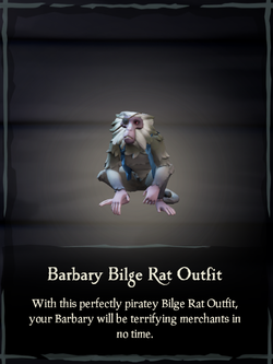 Barbary Bilge Rat Outfit.png