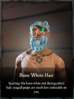Bone White Hair.png