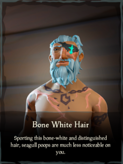 Bone White Hair.png