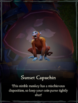 Sunset Capuchin.png