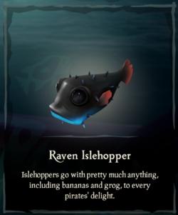 Raven Islehopper.png