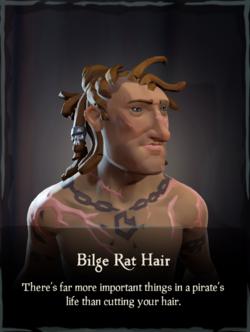 Bilge Rat Hair.png