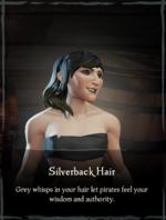 Silverback Hair.png