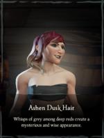 Ashen Dusk Hair.png