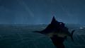 Shores Stormfish1.png