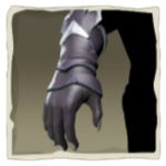 Nightshine Parrot Gloves inv.png