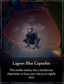 Lagoon Blue Capuchin.png