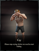 Cry Emote.png