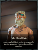 Pale Blond Hair.png