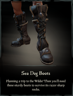 Sea Dog Boots.png