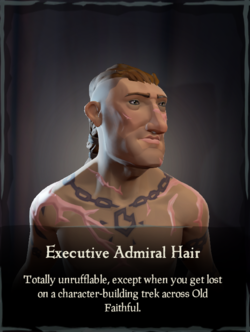 Executive Admiral Hair.png