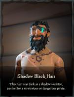 Shadow Black Hair.png