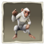 Cloudy Capuchin inv.png