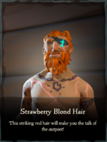 Strawberry Blond Hair.png