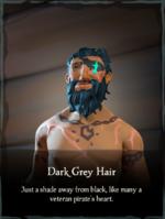 Dark Grey Hair.png
