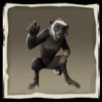 Whitebeard Capuchin inv.png