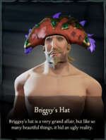 Briggsy's Hat.png
