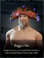 Briggsy's Hat.png