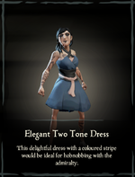 Elegant Two Tone Dress.png