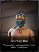 Silver Grey Hair.png